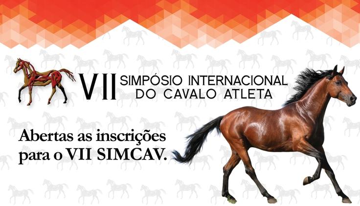 Destaque SIMCAV 2
